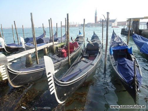 2018_03_25_Venezia_Cittadella_93.jpg