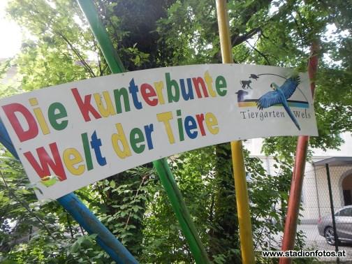 2015_06_10_StMarienkirchen_Pettenbach_80